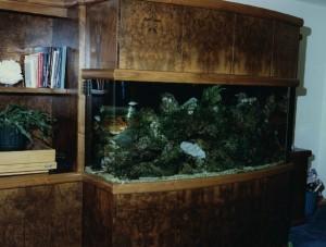 Burl Aquarium